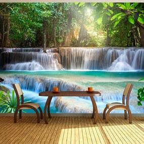 Fototapeta Bimago - Awakening of nature + lepidlo zadarmo 200x140 cm