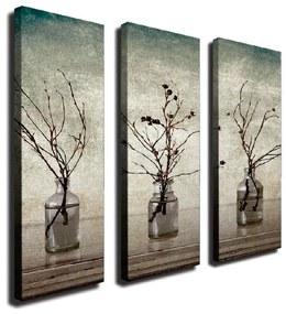 3-dielny nástenný obraz na plátne Vases