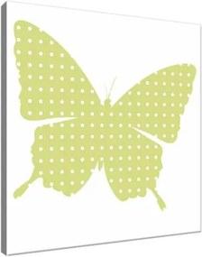 Obraz na plátne Bodkovaný motýlik 30x30cm 4095A_1AI