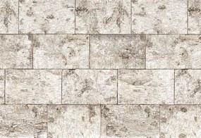 Fototapety, rozmer 368 x 254 cm, kamenná stena, Komar 8-740