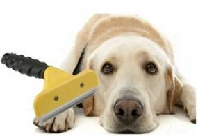 Slevnuj Hrablo pre psov - veľkosť M
