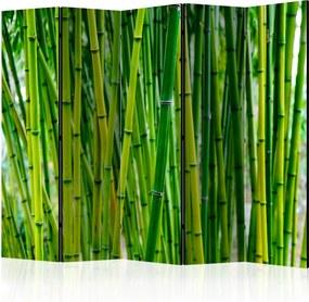 Paraván - Bamboo Forest II [Room Dividers] 225x172 7-10 dní