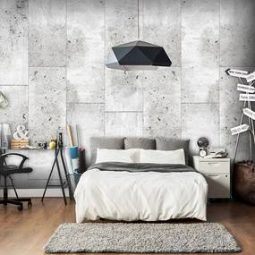 Fototapeta - Concretum murum 50x1000
