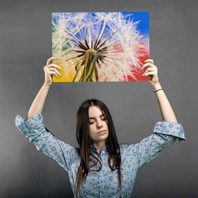 CARO Kovový obraz - Dandelion 4 40x30 cm