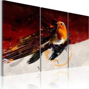 Obraz na plátne - Barevný ptáček