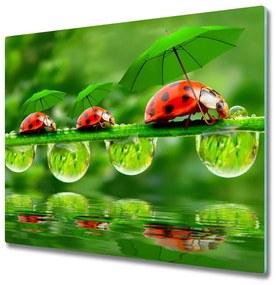 Sklenená doska na krájanie Ladybug slnečníky 60x52 cm