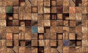 3D Fototapeta Drevo vlies 416 x 254 cm