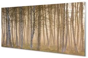 Nástenný panel Sunrise strom les 120x60cm