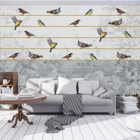 Fototapeta - Vtáky na zlatom povrázku (254x184 cm), 10 ďalších rozmerov