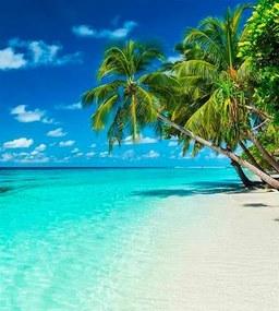 Vliesové fototapety, rozmer 225 cm x 250 cm, rajská pláž, DIMEX MS-3-0215