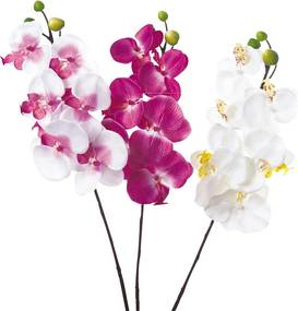 Dekoračná orchidej