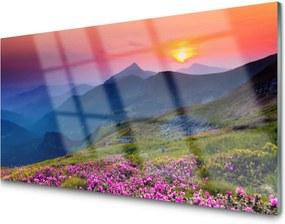 Sklenený obklad Do kuchyne Hory Lúka Kvety Príroda