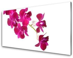 Sklenený obklad Do kuchyne Kvety rastlina príroda 125x50cm