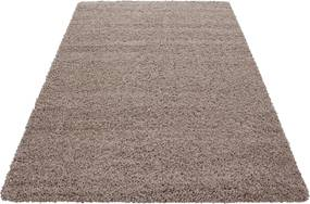 Ayyildiz koberce Kusový koberec Dream Shaggy 4000 beige - 65x130 cm