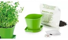 Tescoma Súprava pre pestovanie byliniek SENSE, tymián 899072.00