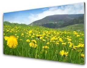 Nástenný panel Púpava príroda 140x70cm