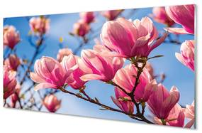 Nástenný panel kvety 125x50cm
