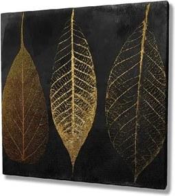 Obraz na plátne Autumn Leaves, 45 × 45 cm