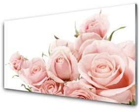 Obraz na skle Ruže kvety rastlina 100x50cm