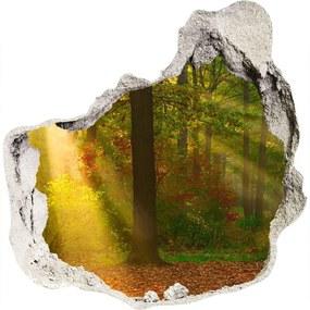 Nálepka fototapeta 3D výhľad Les slnko WallHole-75x75-piask-75879040