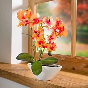 Magnet 3Pagen Orchidea Phalaenopsis