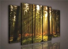 Obraz na plátne, rozmer 150 x 100 cm, les, IMPOL TRADE PS204S12