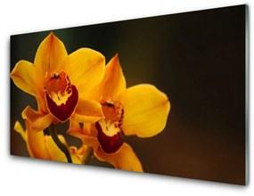 Nástenný panel Kvety rastlina 120x60cm