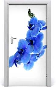Fototapeta samolepiace  modrá orchideami