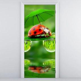 Fototapeta na dvere - Lienka s dáždnikom (95x205cm)