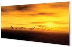 Nástenný panel Strom mraky neba žirafa 120x60cm