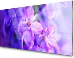 Sklenený obklad Do kuchyne Fialové Kvety Príroda