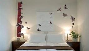Samolepky na stěnu, rozmer 50 x 70 cm, motýli s kvety WS039, IMPOL TRADE