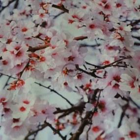 PVC obrus Čerešňové kvety š.137cmx1m 137cm x 100cm