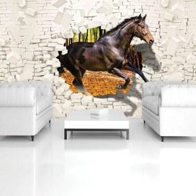 Fototapeta - Kôň vyskočil zo steny - 3D (254x184 cm), 10 ďalších rozmerov