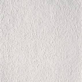 Vliesové pretierateľné tapety Rauhfaser Elegance 1000305, rozmer 18,00 m x 0,53 m = 9,54 m2, Erfurt