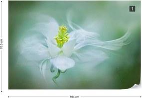 Fototapeta GLIX - Mystical + lepidlo ZADARMO Vliesová tapeta  - 104x70 cm