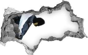 Nálepka fototapeta 3D výhľad New York WallHole-beton-95x73-91962893