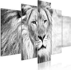 Obraz - The King of Beasts (5 Parts) Wide Black and White 200x100