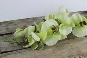 Zelená umelá orchidea na stonke 80cm