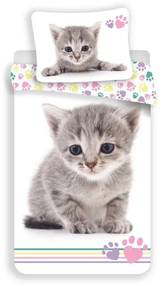JERRY FABRICS Obliečky Kitten Colour Bavlna, 140/200, 70/90 cm