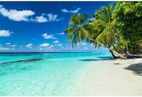 Vliesové fototapety, rozmer 375 cm x 250 cm, rajská pláž, DIMEX MS-5-0215