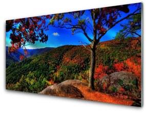 Nástenný panel Hora les príroda 125x50cm