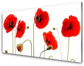 Nástenný panel Maky rastlina príroda 125x50cm