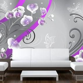 Fototapeta - Fialové orchidey - variácie 200x140 + zadarmo lepidlo