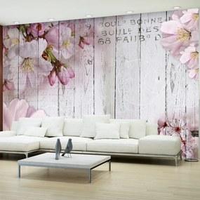 Fototapeta kvety jablka - Apple Blossoms