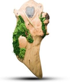 TIMMER wood decor ART - Moss - Orechové drevené hodiny