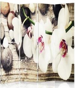 CARO Paraván - White Flowers | štvordielny | obojstranný 145x180 cm