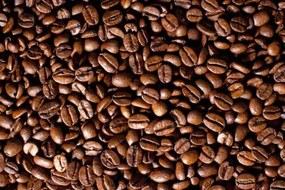 Vliesové fototapety, rozmer 312 x 219 cm, káva, IMPOL TRADE 182VE
