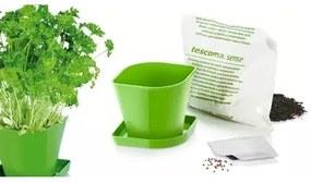 Tescoma Súprava pre pestovanie byliniek SENSE, petržlen 899064.00
