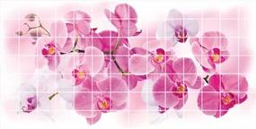 Obkladové 3D PVC panely TP10018768, rozmer 955 x 480 mm, kvety orchidey, GRACE